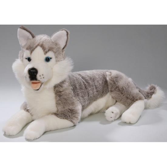 Husky hond knuffeldier 42 cm