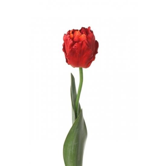 /kados--gadgets/hobby--creatief/hobby-materialen/decoratie-materiaal/kunstbloemen--planten/kunstbloemen/alle-kleuren-soorten-kunstbloemen