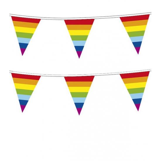 Thema feestartikelen Plastic regenboog vlaggenlijn 10 meter