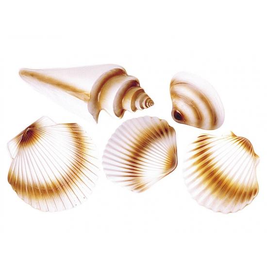 Plastic schelpen decoratie