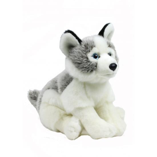 Pluche knuffel Husky hond 38 cm