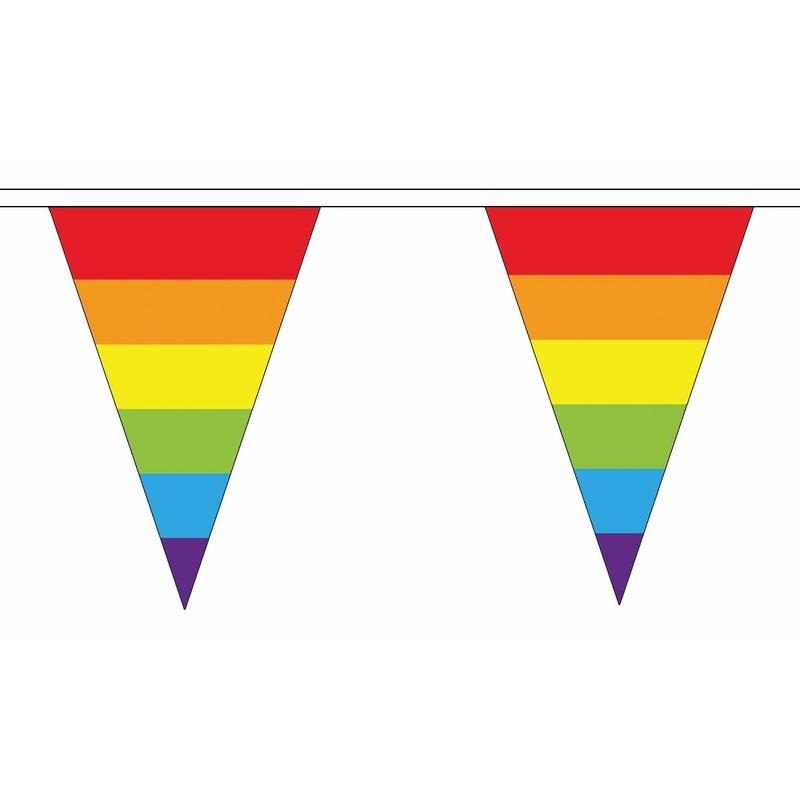 Feestartikelen diversen AlleKleurenShirts Regenboog slinger met puntvlaggetjes 20 meter