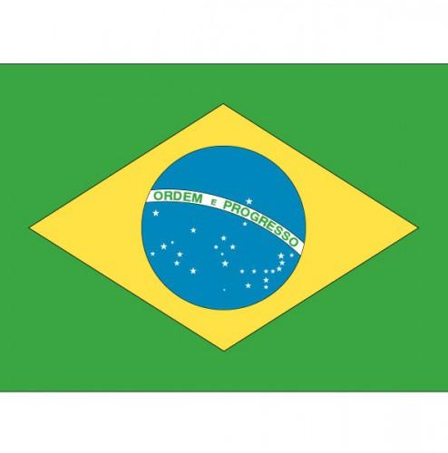 Shoppartners Stickertjes van vlag van Brazilie Landen versiering en vlaggen