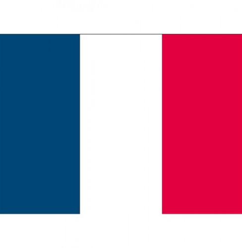 Stickertjes van vlag van Frankrijk Shoppartners Landen versiering en vlaggen