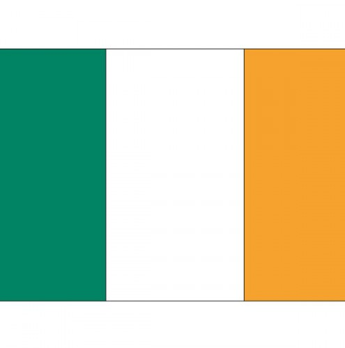 Landen versiering en vlaggen Shoppartners Stickertjes van vlag van Ierland