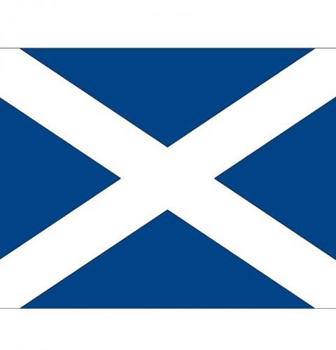 Landen versiering en vlaggen Shoppartners Stickertjes van vlag van Schotland