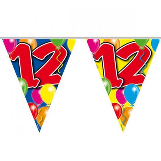 Vlaggenlijn 12 jaar 10 meter Folat Leeftijd feestartikelen