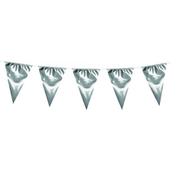 Kleuren versiering AlleKleurenShirts XXL zilverkleurige slingers 10 meter
