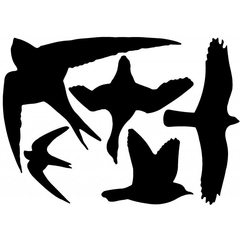 Zwarte raamsticker met vogels 33 x 23 cm AlleKleurenShirts beste prijs